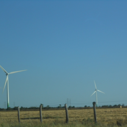 A windmill farm