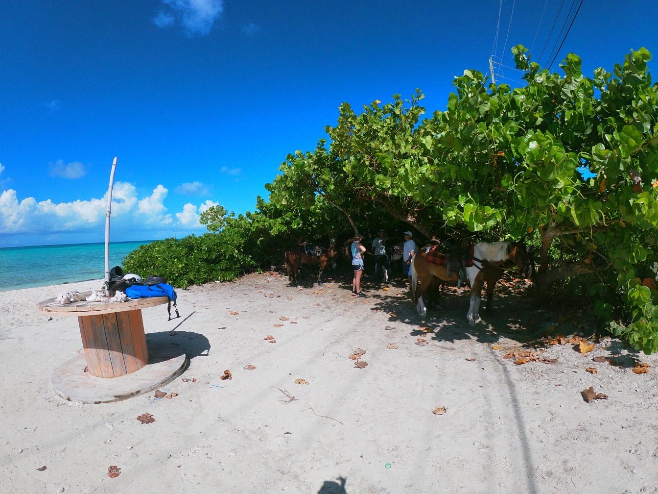 Turks Caicos130.JPG